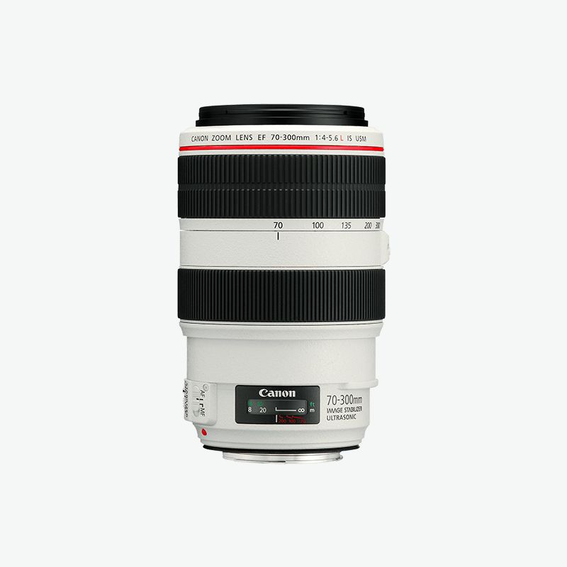 Canon EF 70-300mm f 4-5.6L IS USM