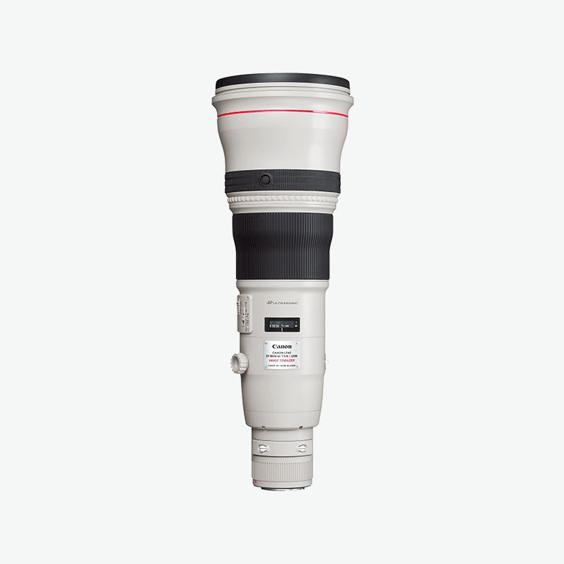 Canon EF 800mm f 5.6L IS USM
