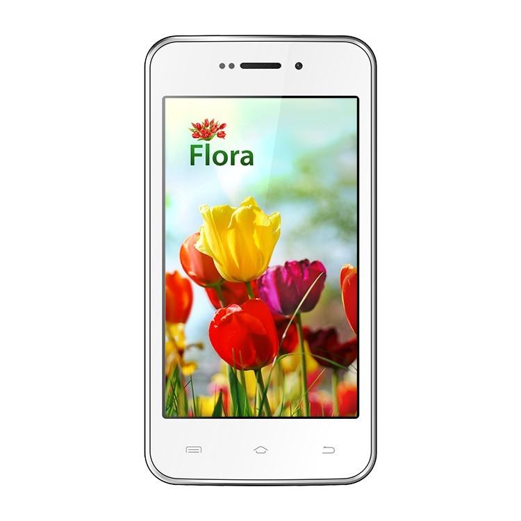 Keneksi Flora