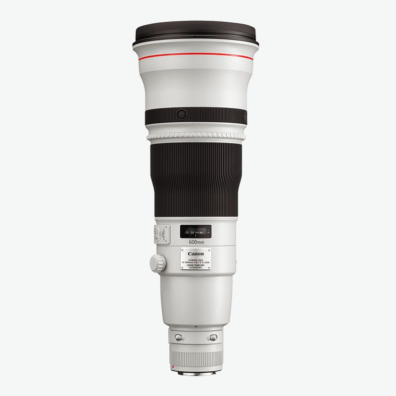 Canon EF 600mm f 4L IS II USM