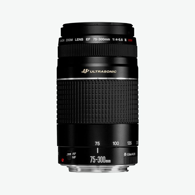 Canon EF 75-300mm f 4-5.6 III USM